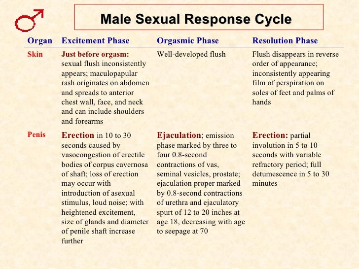 Menstrual cycle and sexuality