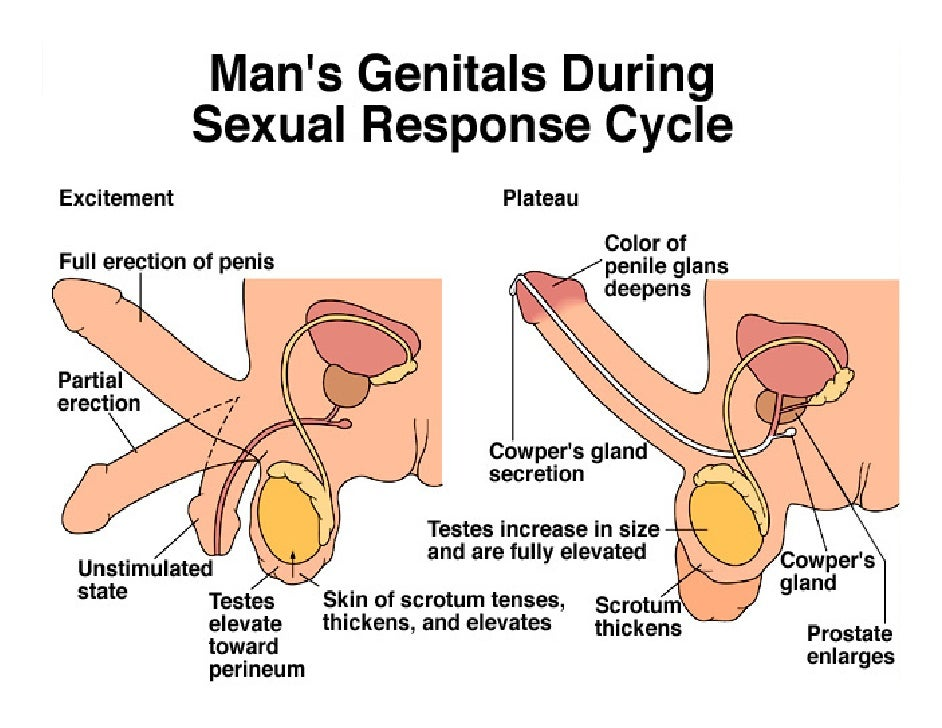 How to stimulate the perineum