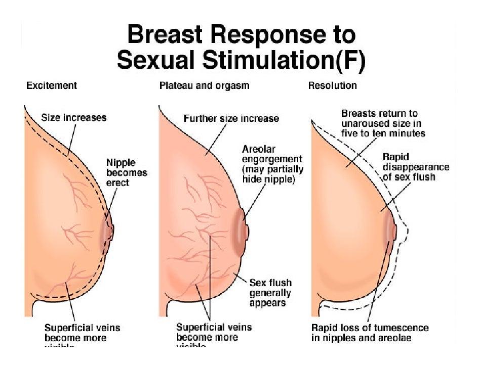 averaage-clitoris-size-nasty-amateur-porn