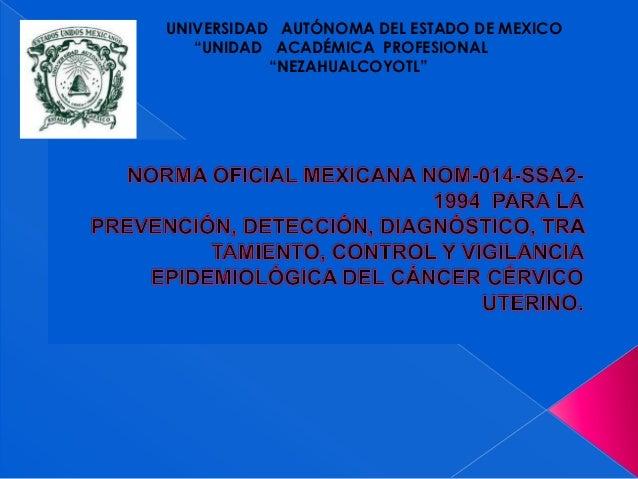 """UNIVERSIDAD AUTÓNOMA DEL ESTADO DE MEXICO   """"UNIDAD ACADÉMICA PROFESIONAL           """"NEZAHUALCOYOTL"""""""