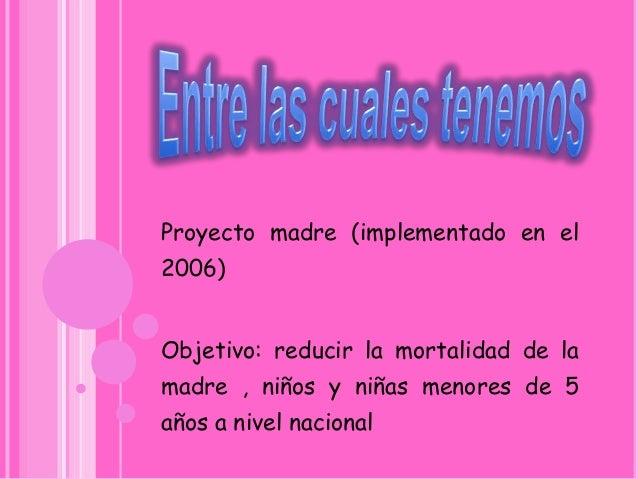 Norma oateficial para la tencion integral y reproductiva Slide 2
