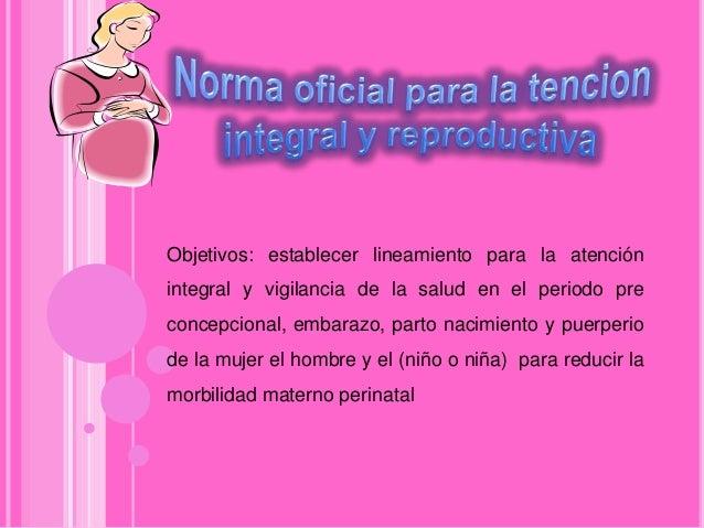 Norma oateficial para la tencion integral y reproductiva Slide 3