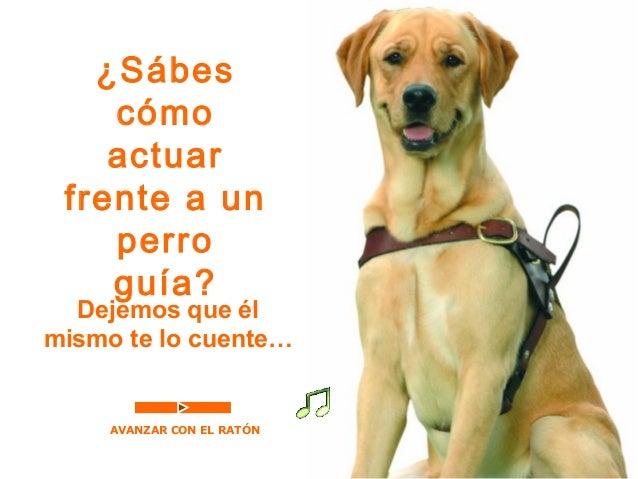 ¿Sábes  cómo  actuar  frente a un  perro  guía?  Dejemos que él  mismo te lo cuente…  AVANZAR CON EL RATÓN