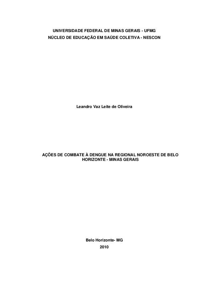 UNIVERSIDADE FEDERAL DE MINAS GERAIS - UFMG NÚCLEO DE EDUCAÇÃO EM SAÚDE COLETIVA - NESCON  Leandro Vaz Leite de Oliveira  ...