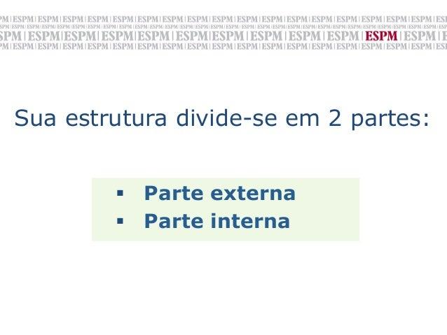 Sua estrutura divide-se em 2 partes:         § Parte externa        § Parte interna