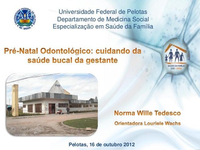 Pelotas, 16 de outubro 2012Universidade Federal de PelotasDepartamento de Medicina SocialEspecialização em Saúde da Família