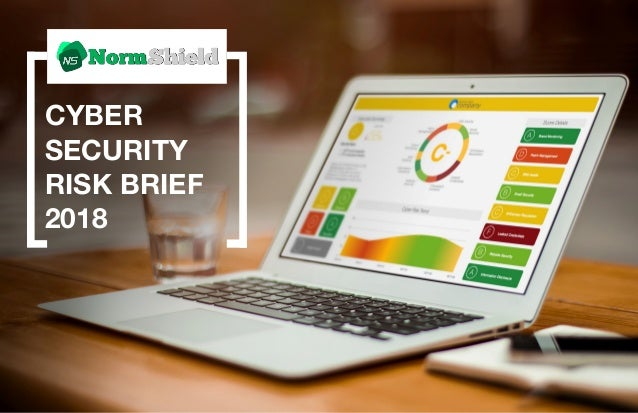 Normshield 2018 Cyber Security Risk Brief