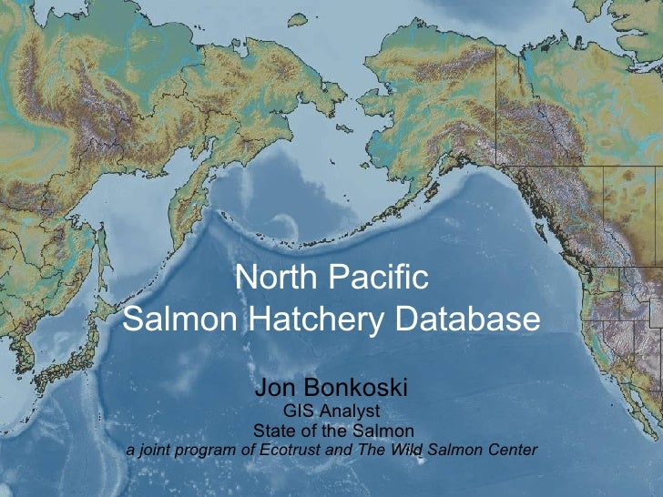 North Pacific Salmon Hatchery Database Jon Bonkoski GIS Analyst  State of the Salmon a joint program of Ecotrust and The W...