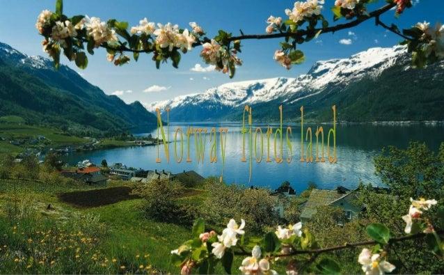 Ulvik Hardanger fjord