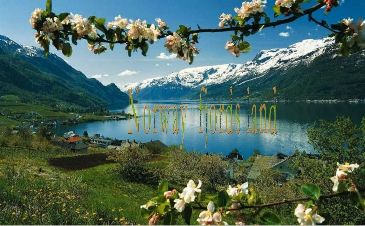 Norway  fjords land