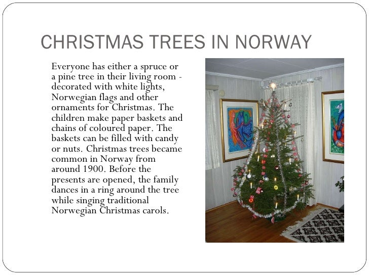 christmas trees in norway