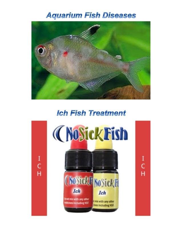 No Sick Fish Tropical Fish Disease Ich Fish Treatment