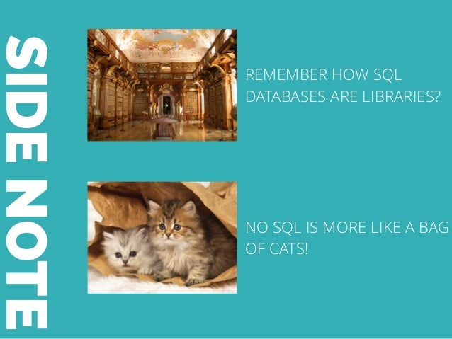 SIDENOTE REMEMBER HOW SQL DATABASES ARE LIBRARIES? NO SQL IS MORE LIKE A BAG OF CATS!
