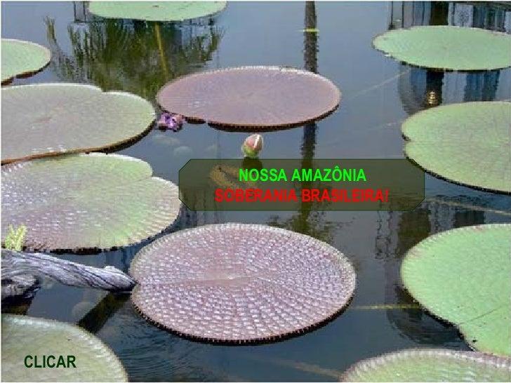 NOSSA AMAZÔNIA SOBERANIA BRASILEIRA! CLICAR