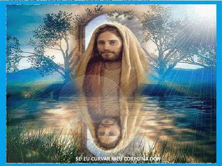 Se Eu Curvar Meu Corpo Na Dor Me A Frases Nossa: Homenagem A Nossa Senhora