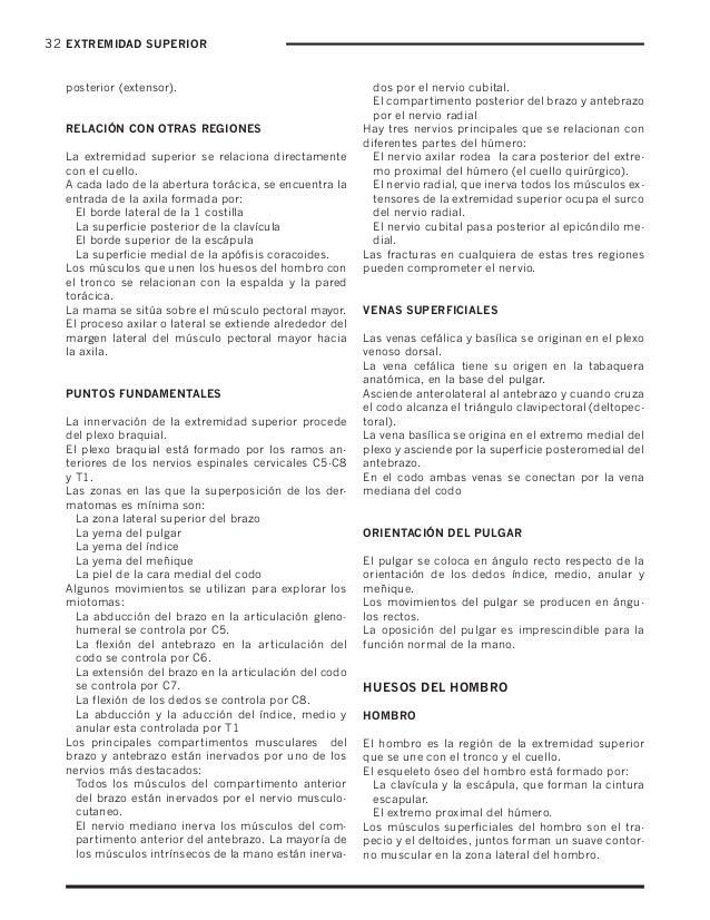 Notas de anatomía para estudiantes
