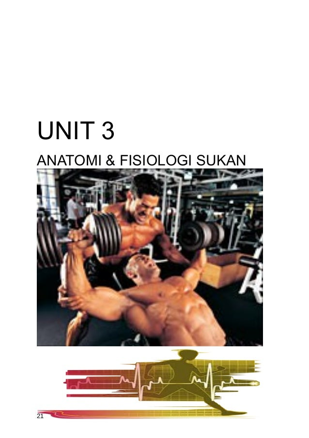 UNIT 3ANATOMI & FISIOLOGI SUKAN21