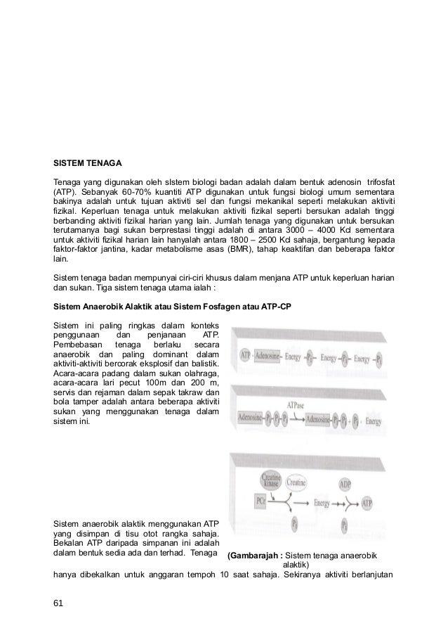 SISTEM TENAGATenaga yang digunakan oleh sIstem biologi badan adalah dalam bentuk adenosin trifosfat(ATP). Sebanyak 60-70% ...