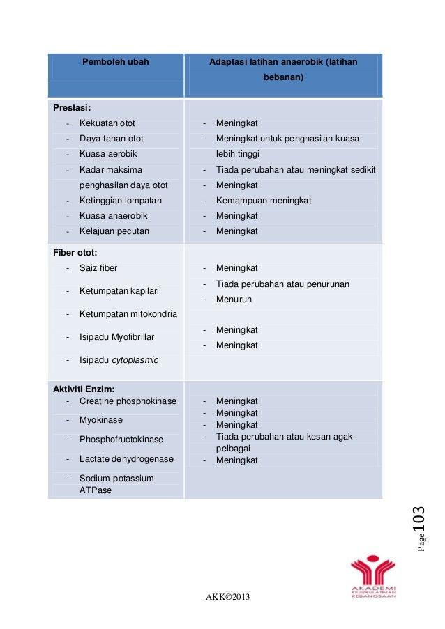 AKK©2013 Page103 Pemboleh ubah Adaptasi latihan anaerobik (latihan bebanan) Prestasi: - Kekuatan otot - Daya tahan otot - ...