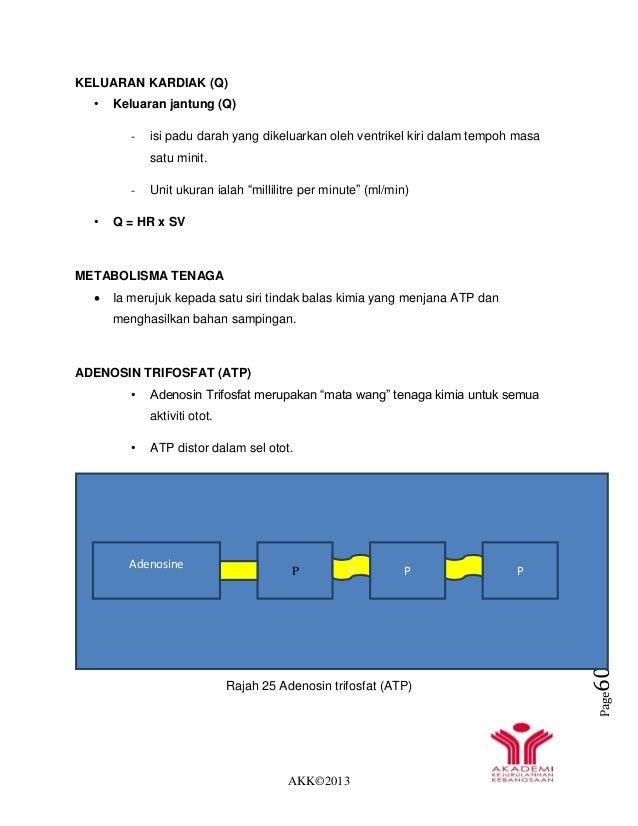 AKK©2013 Page60 KELUARAN KARDIAK (Q) • Keluaran jantung (Q) - isi padu darah yang dikeluarkan oleh ventrikel kiri dalam te...