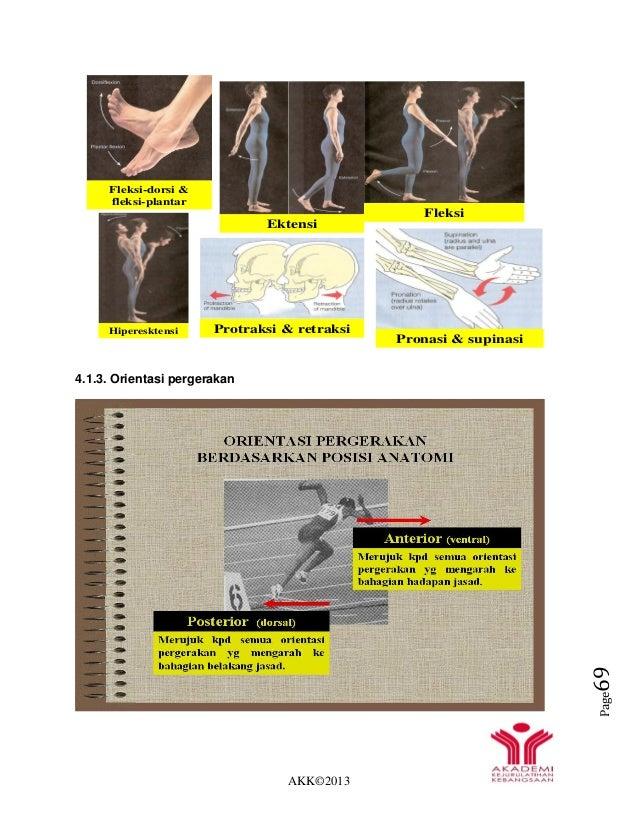 AKK©2013 Page69 4.1.3. Orientasi pergerakan Fleksi-dorsi & fleksi-plantar Hiperesktensi Ektensi Fleksi Protraksi & retraks...