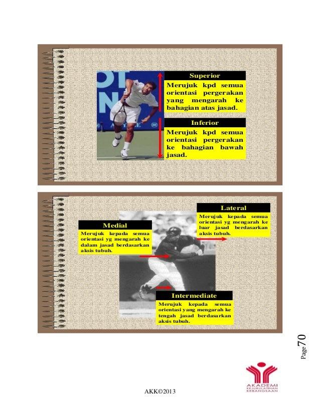 AKK©2013 Page70 Superior Merujuk kpd semua orientasi pergerakan yang mengarah ke bahagian atas jasad. Inferior Merujuk kpd...