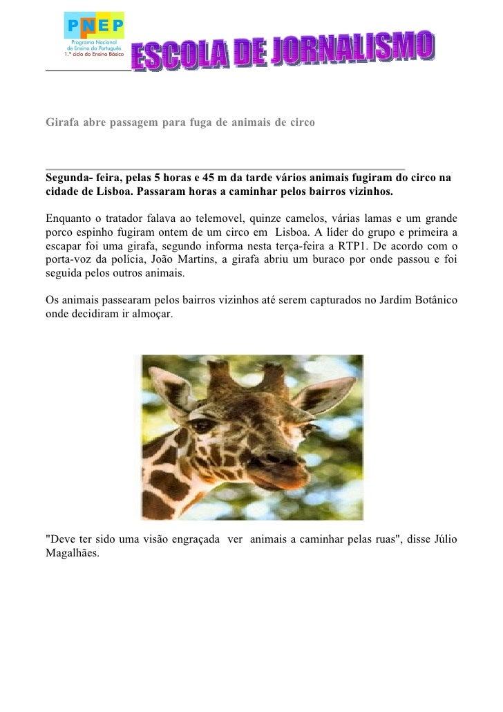 Girafa abre passagem para fuga de animais de circo    Segunda- feira, pelas 5 horas e 45 m da tarde vários animais fugiram...