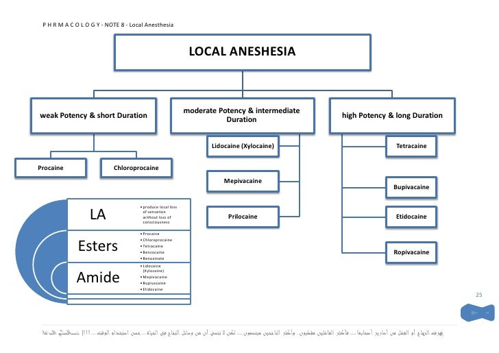 Local Anesthetic Systemic Toxicity Last also Nesacaine 3 likewise Lidocaine 2 Xylocaine 50ml Mdv also Emergency Management Of Anaphylactic Shock moreover Understanding Available Agents. on local anesthetics 2