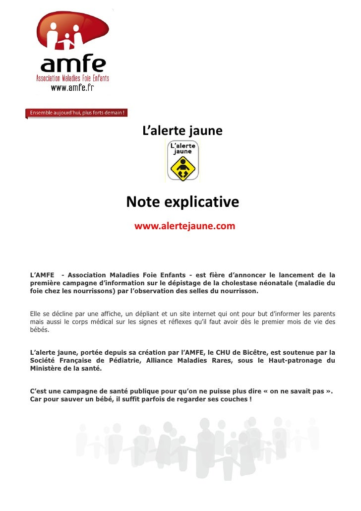 L'alerte jaune                                Note explicative                                   www.alertejaune.comL'AMFE...