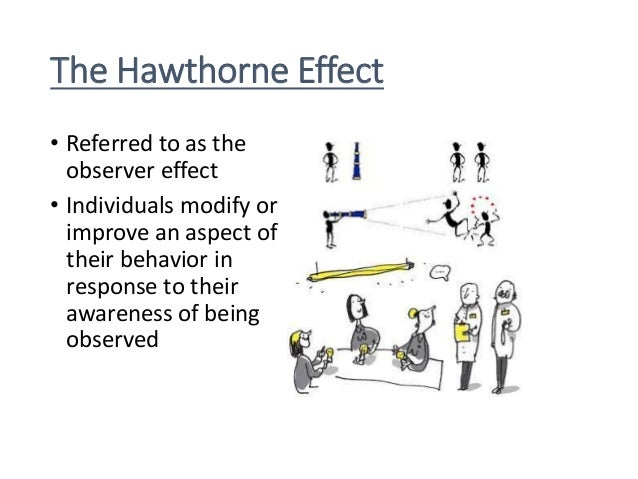 Slikovni rezultat za hawthorne effect cartoon