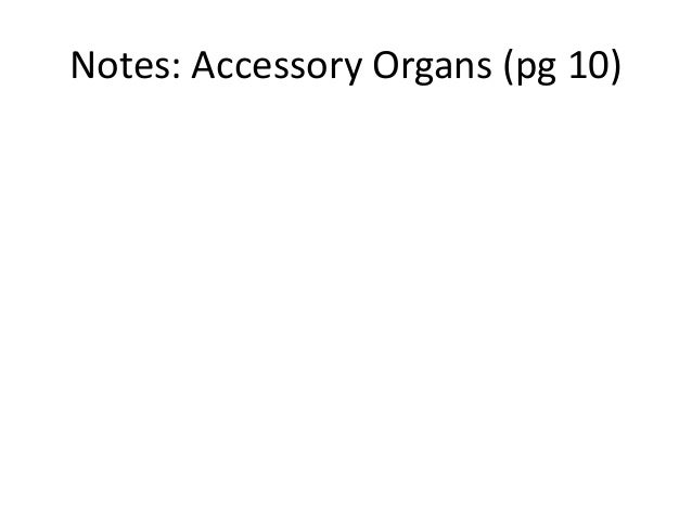 Notes: Accessory Organs (pg 10)