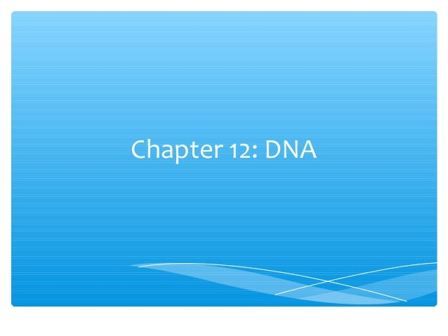 Chapter 12: DNA