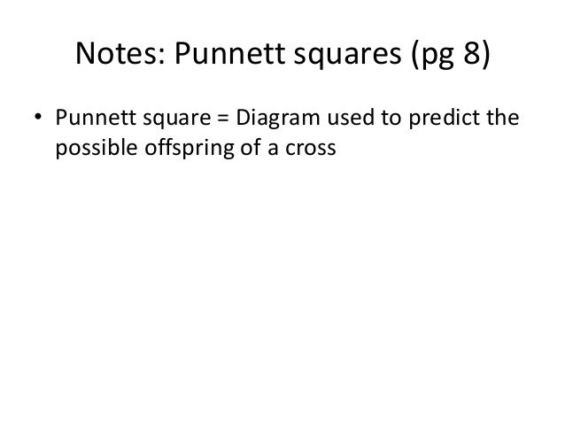 Enjoyable Notes Punnett Squares Wiring Digital Resources Remcakbiperorg