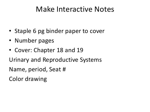 Make Interactive Notes• Staple 6 pg binder paper to cover• Number pages• Cover: Chapter 18 and 19Urinary and Reproductive ...