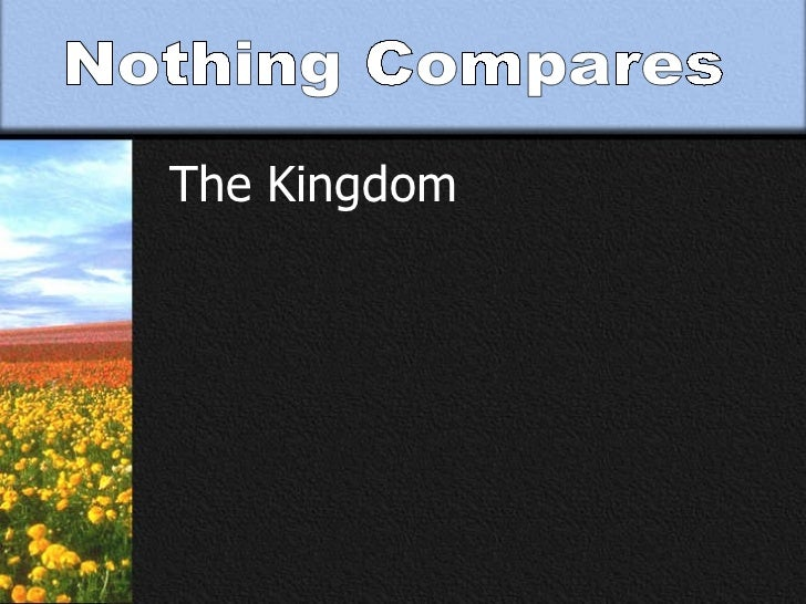 Nothing Compares The Kingdom