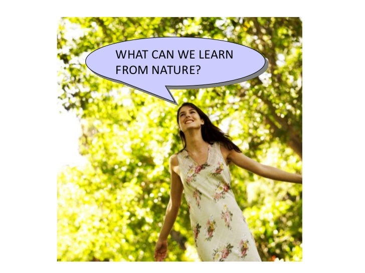 WHAT CAN WE LEARNFROM NATURE?