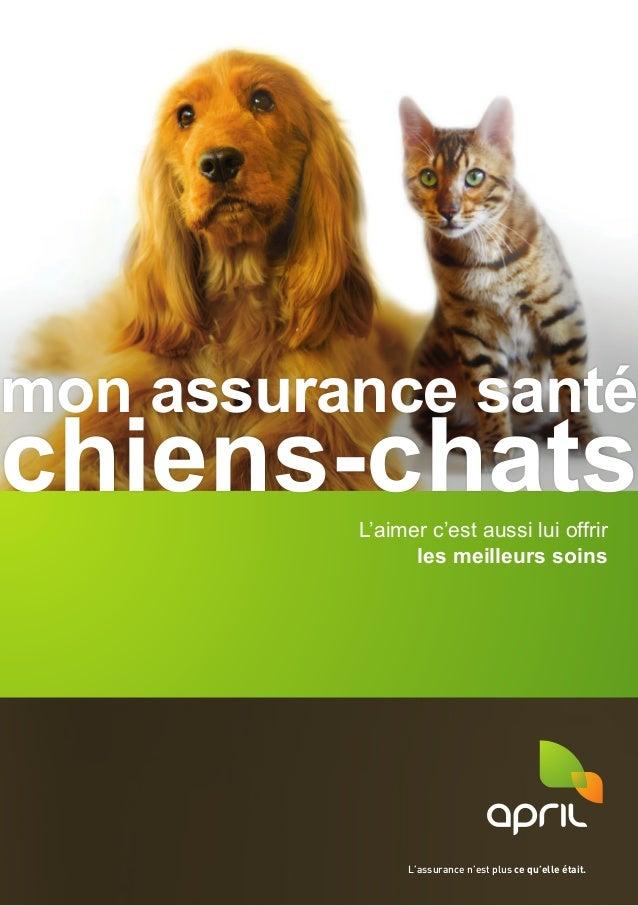 L'aimer c'est aussi lui offrir les meilleurs soins mon assurance santé chiens-chats L'assurance n'est plus ce qu'elle étai...