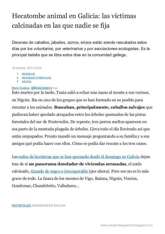 Hecatombe animal en Galicia: las víctimas calcinadas en las que nadie se fija Decenas de caballo...