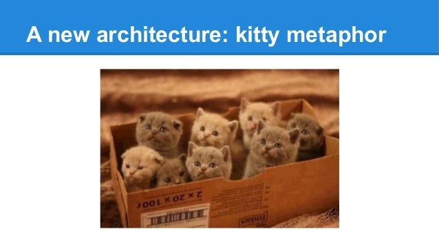 A new architecture: kitty metaphor