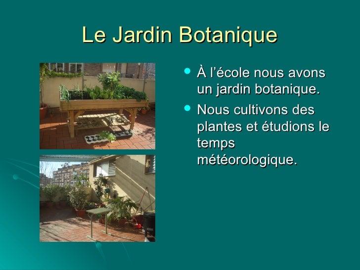 Le Jardin Botanique <ul><li>À l'école nous avons un jardin botanique. </li></ul><ul><li>Nous cultivons des plantes et étud...