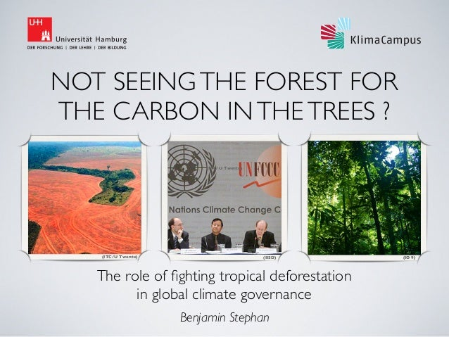 NOT SEEING THE FOREST FOR THE CARBON IN THE TREES ? (ITC/U Twente)  (ITC/U Twente)  (IISD)  The role of fighting tropical d...