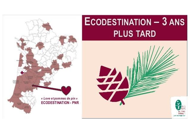 ECODESTINATION – 3 ANS PLUS TARD « Love et pommes de pin » ECODESTINATION - PNR