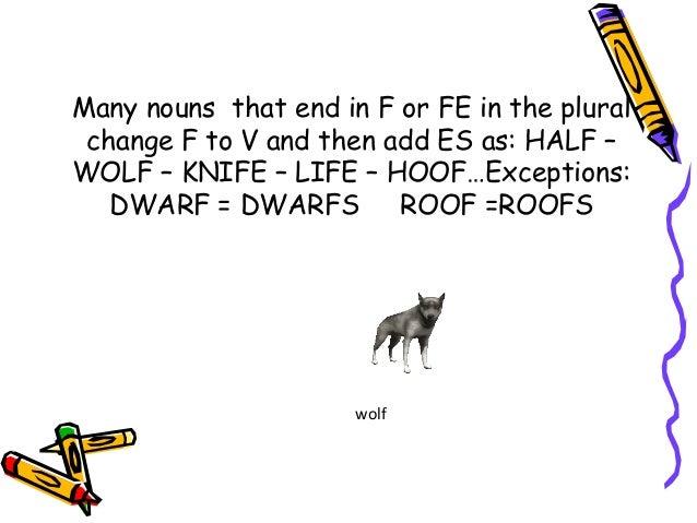 Nouns Ans Their Plural Forms