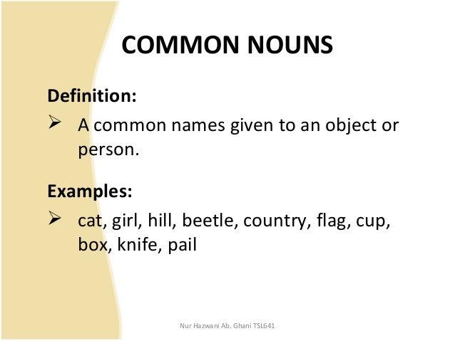 COMMON NOUN DEFINITION PDF