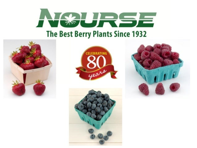 More InformationNourse Farms, Inc.41 River RoadWhately, MA 01373