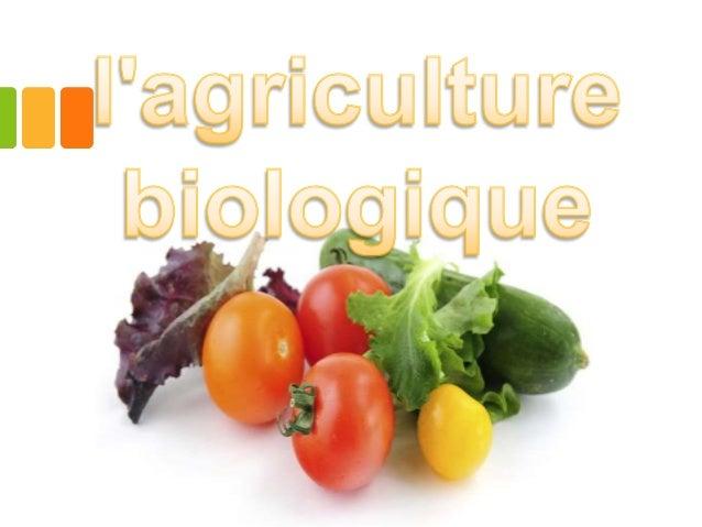 Plan  •-1.Définition •-2. les bienfaits a-Impact économique et social - Tissu humain et rural -Nutrition et santé