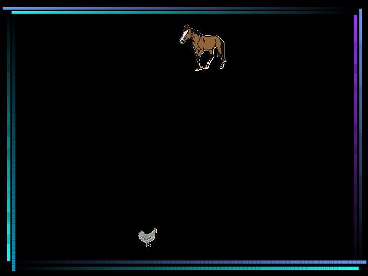 Le cheval Et la poule