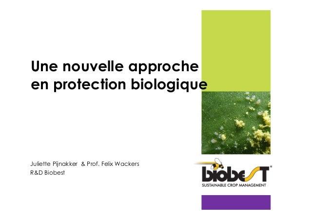 Une nouvelle approche en protection biologique  Juliette Pijnakker & Prof. Felix Wackers R&D Biobest