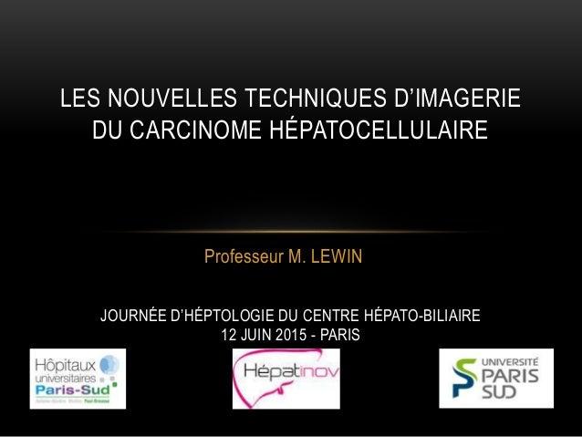 Professeur M. LEWIN LES NOUVELLES TECHNIQUES D'IMAGERIE DU CARCINOME HÉPATOCELLULAIRE JOURNÉE D'HÉPTOLOGIE DU CENTRE HÉPAT...