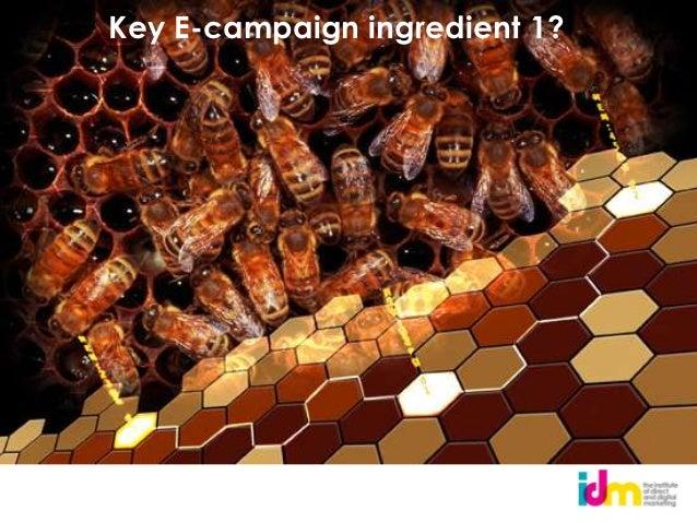 Key E-campaign ingredient 5?